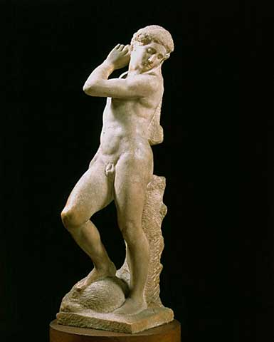 41_00241920_michelangelo-buonarroti_david-apollo1