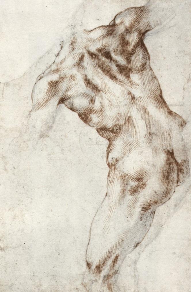 Michelangelo Buonarroti - il torso incurvato di una figura visto di spalle