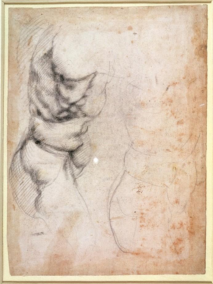 Michelangelo Buonarroti -Studio di torso e natica