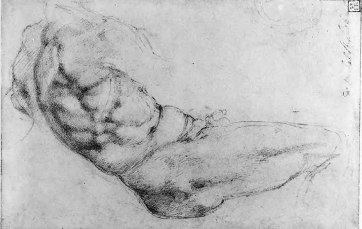 Michelangelo Buonarroti - Un uomo in vista laterale destra, sdraiato, con busto in torsione verso sinistra